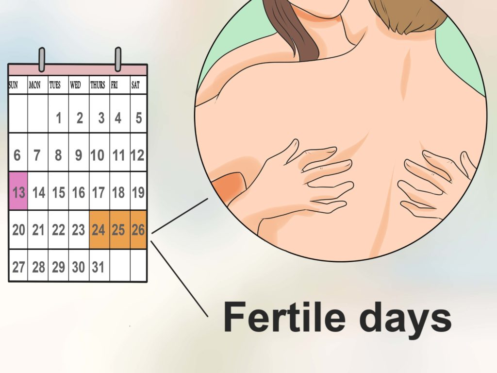 Periodo fertile: Qual'è il giorno più fertile del mese per rimanere incinta?