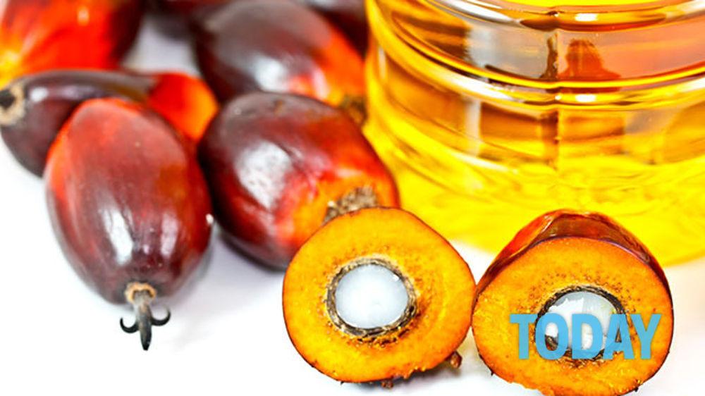 Olio di palma: Fa male? Ecco tutti i rischi per la salute e dove si trova!