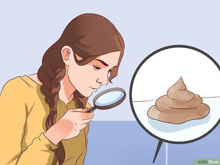 Muco nelle feci: 7 Cause che lo producono e quando è qualcosa di grave
