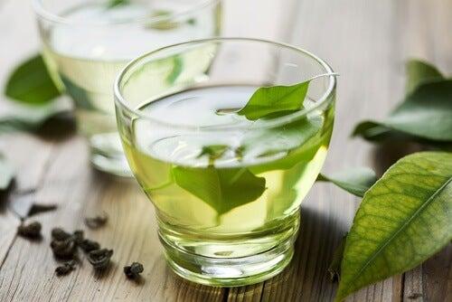 Le 7 migliori erbe per combattere tumori, ridurre le cellule tumorali e prevenire il cancro