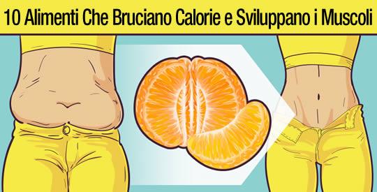 10 alimenti che bruciano il grasso e sviluppano i muscoli del corpo!