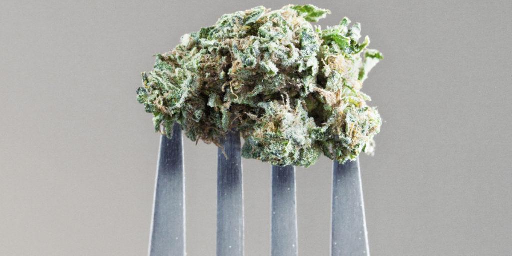 La Cannabis in cucina: ecco i limiti di THC consentiti nell'alimentazione