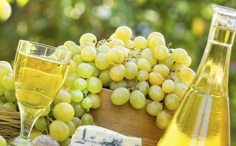 Il vino sotto la minaccia del riscaldamento globale. Lo studio