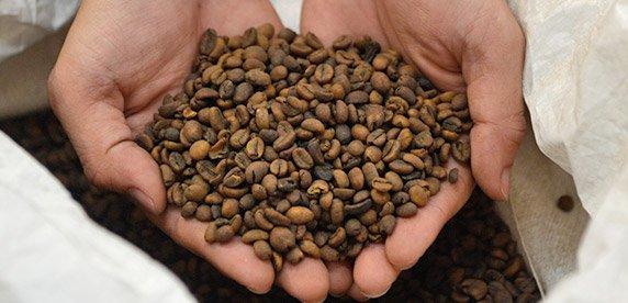 Recuperare i resti del caffè