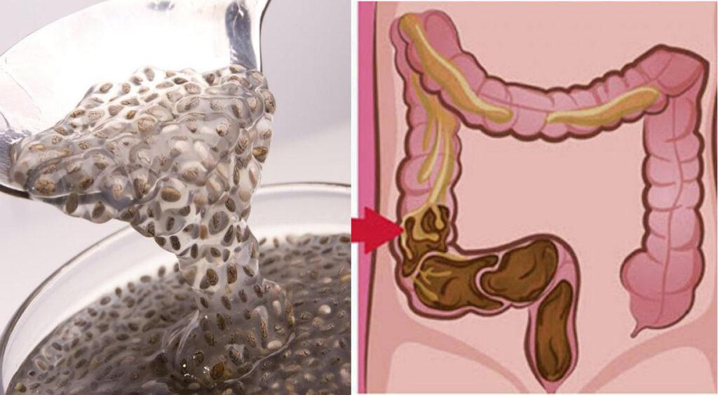 La bevanda di semi di lino per svuotare l'intestino e ridurre il gonfiore alla pancia