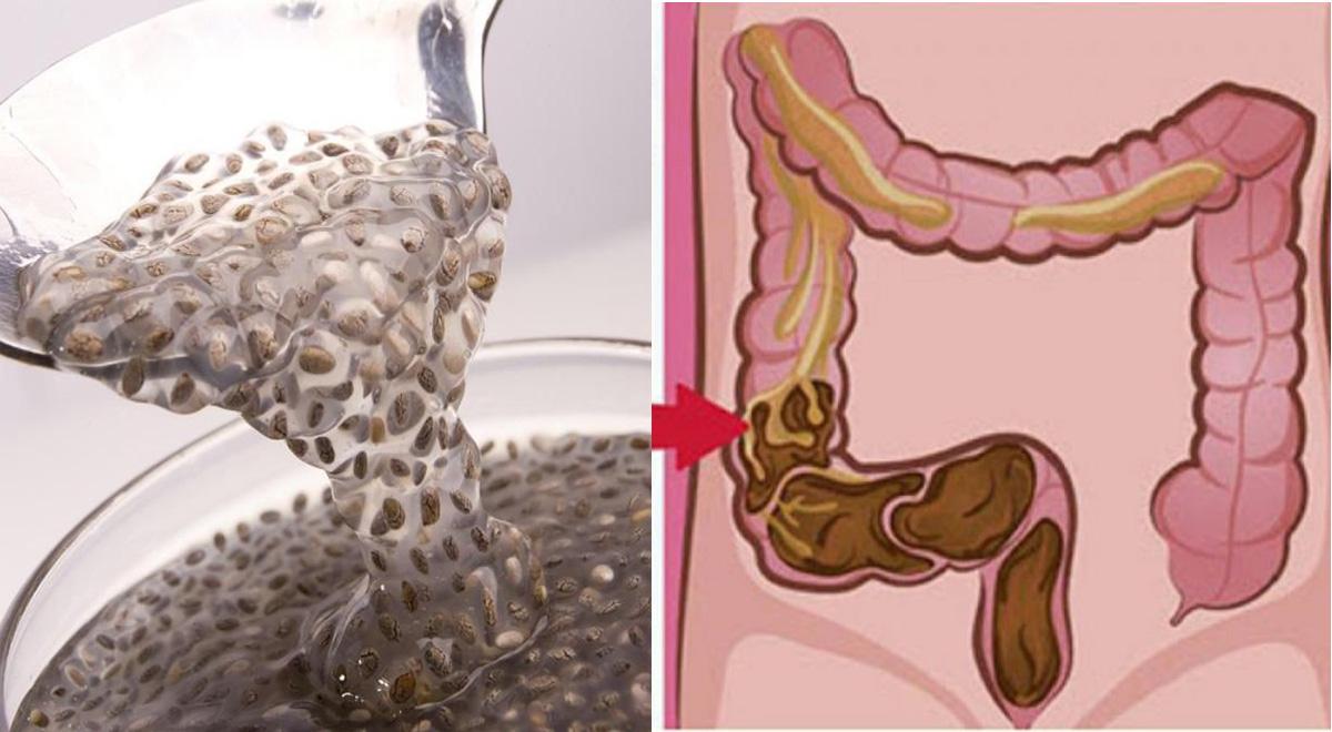 Semi di lino per svuotare l'intestino