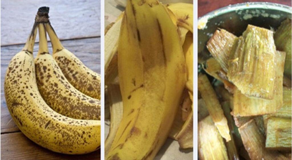 Butti via le bucce di banana? 10 motivi utili per cui non dovresti più farlo!
