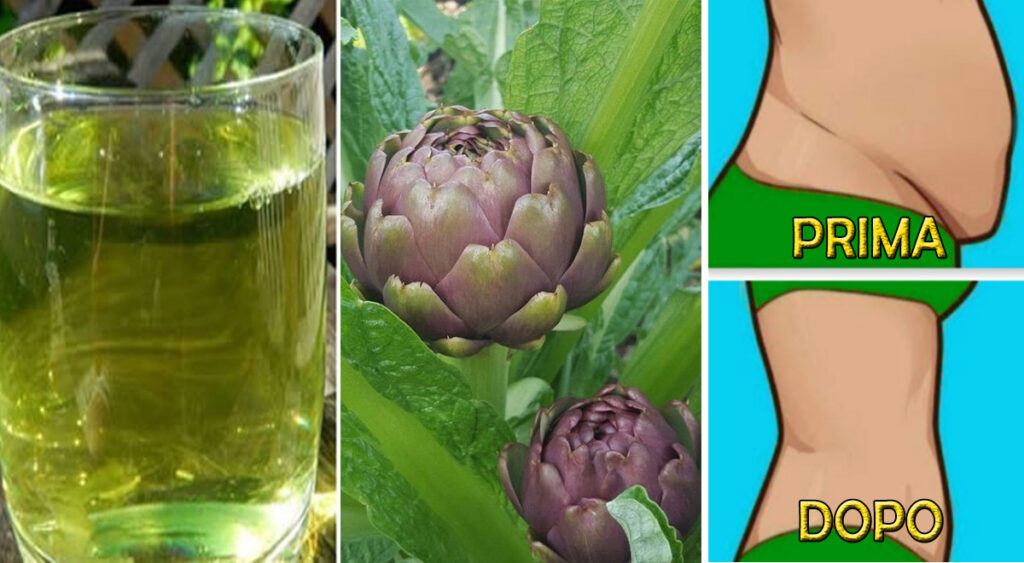 6 motivi per cui dovresti mangiare il carciofo spesso, aiuta a dimagrire e disintossicare il corpo