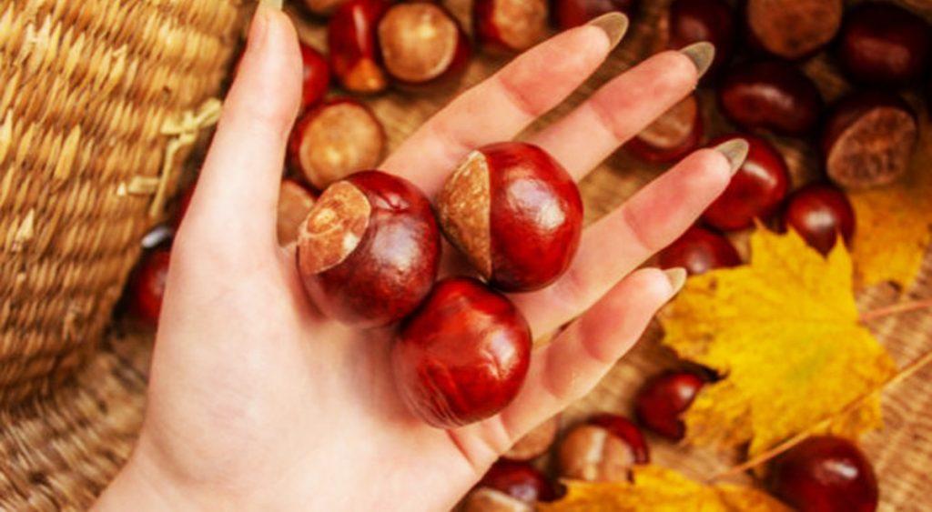 Cosa succede se mangi 5 castagne sul colesterolo e glicemia, meglio se bollite!